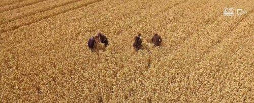 GENERALI AGRO-ZMIENIAMY SIĘ DLA CIEBIE